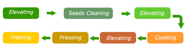 main steps of cottonseed oil pressing
