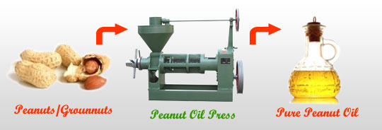 make quality peanut oil with our professional oil press machine