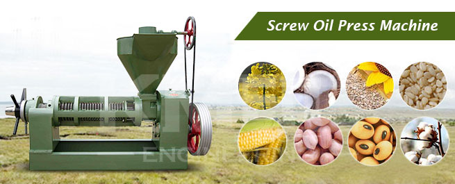 screw oil press machine for vegetable seeds