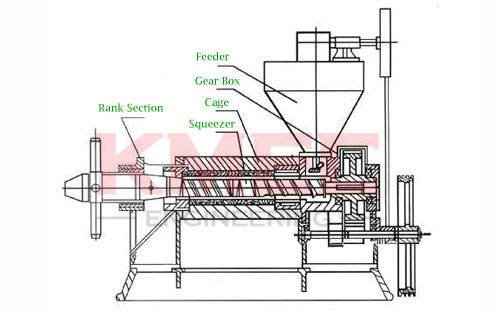 structure of screw oil press machine