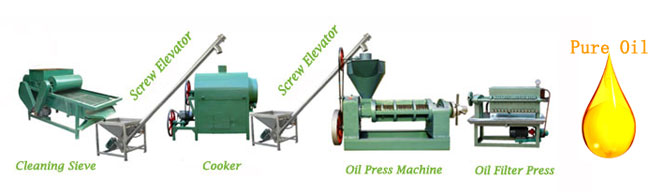 small scale oil pressing line for vegetable seeds and nuts